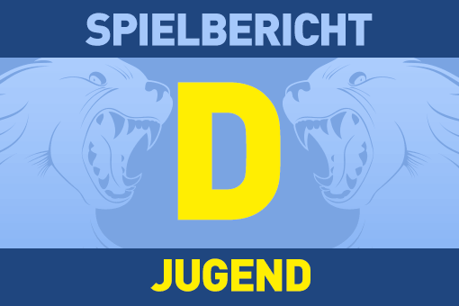 D-Jugend Spieltag in Mosbach 27.11.2016